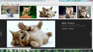 Como hacer una pagina sencilla en HTML