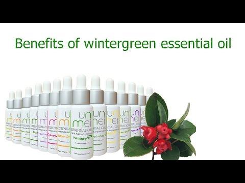 wintergreen-essential-oil-:-benefits-&-properties