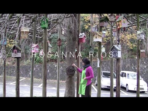 Artist Profile : Rosanna Rios (documentary)