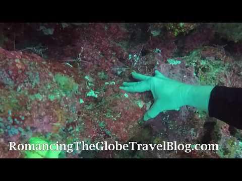 Underwater Manicure, Fiji - Romancing The Globe Travel Blog