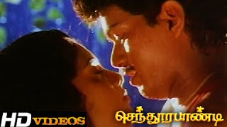 Mane Nane... Tamil Movie Songs - Senthoorapandi [HD]