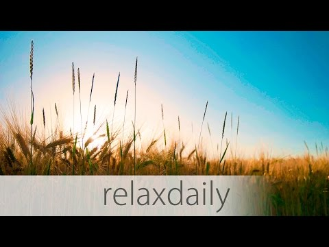 Light & Calm Music - yoga, study, think, relax - N°014 (4K)