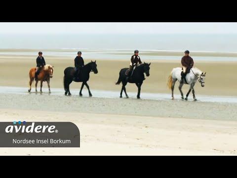 Imagefilm Nordseeinsel Borkum Herbstimpression