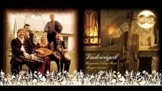 Téka együttes - 09 Korcsos és sűrű magyar (Magyarpalatka)