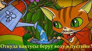 Профессор Почемушкин - Познавательный мультфильм для детей – Откуда кактусы берут воду в пустыне?