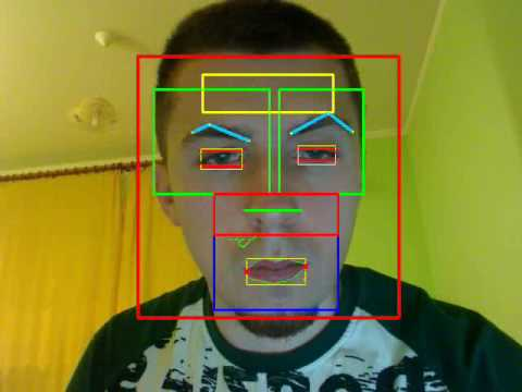 Face Features Detection System - with OpenCV