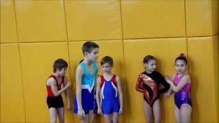 Прыжки на акробатической дорожке 1 взрослый разряд 9 лет