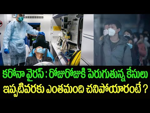 Coronavirus- Death Toll In China Reaches 1500 | Snehatvtelugu