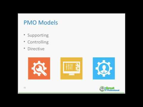 The PMO and Project Portfolio Management
