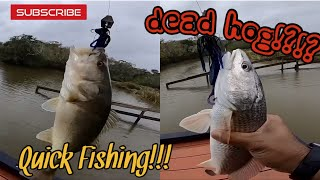 Done some quick fishing today two fish, one bait! Chatter bait chal...
