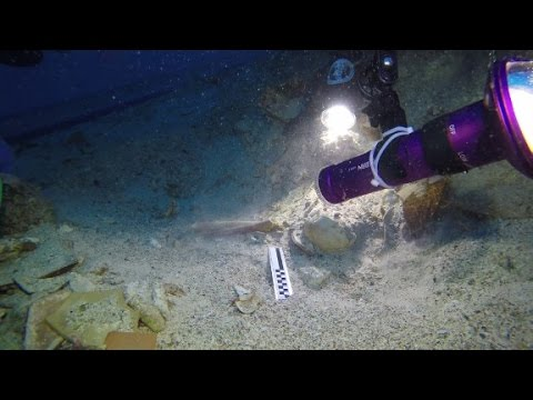 Skeletal remains found at ancient shipwreck site