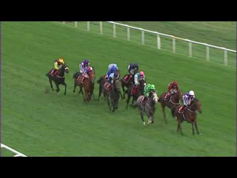 Kingston Hill - Racing Post Trophy (Gr.1)