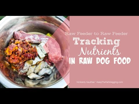 Tracking Nutrients in Raw Dog Food Using NRC [Show & Tell]