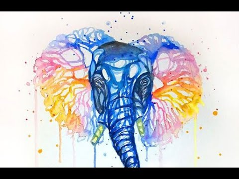 watercolor painting colorful elephant