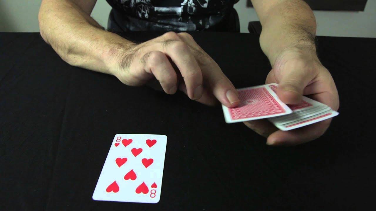 Cat casino wiki