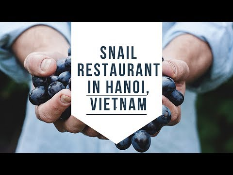 Video of SNAIL restaurant in Hanoi, Vietnam | Wandering the Globe | Mike del Ferro |