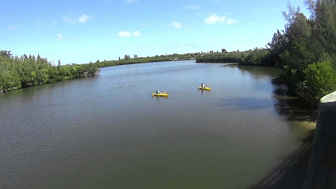 Kayaking With Manatee Round Island Park Vero Beach