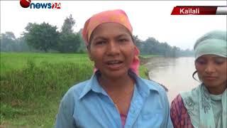 कैलालीमा नदीले खेत कटान गर्दा धानबाली नष्ट - NEWS24 TV