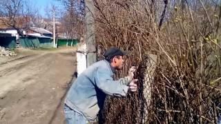 Видео прикол (Moldova)