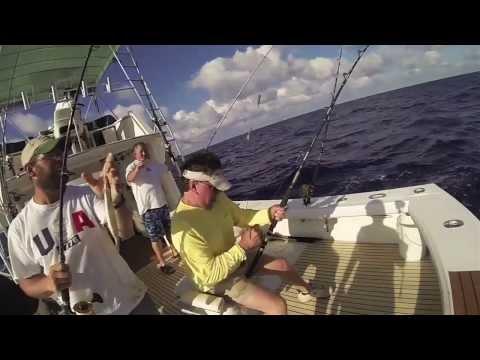 Sea Horse Charters, Islamorada FL
