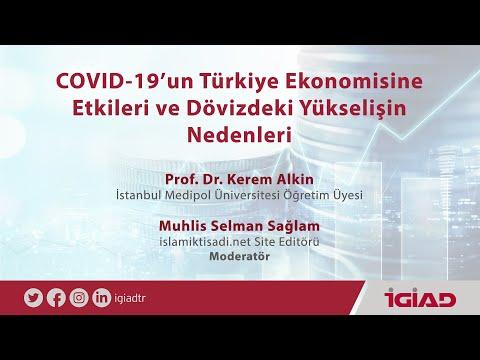 Covid-19'un Türkiye Ekonomisine Etkilerini ve Dövizdeki Yükselişi