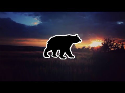'Rolling Meadows' | Chillstep Mix