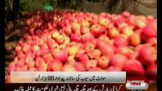 Apple on Swat Valley Pakistan Sherin Zada Express News Swat.flv