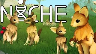Niche Gameplay - Rabbit Dog Genetic Survival Game! - Let's Play Niche Gameplay