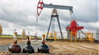 Будущим югорским нефтяникам и культурологам компенсируют расходы на обучение
