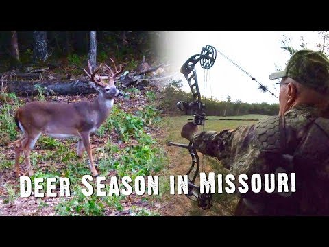 Bow Hunting: Most Hunting Shows Would Not Share This Hunt (#514)