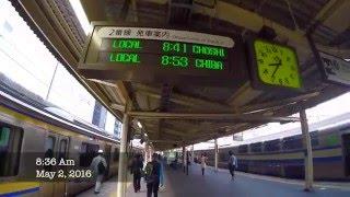 (Dude traveller) WWOOF Japan