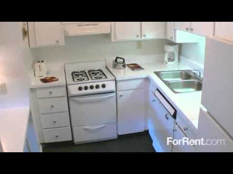 forrent hqdefault treehouse va in com youtube apartments one bedroom watch richmond