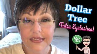 Dollar Tree False Eyelash Review!