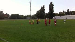 Собака играет в футбол как настоящий профессионал