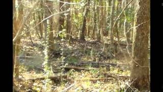 Franklin County Rabbit Hunt 2014
