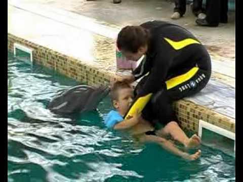 Дельфинотерапия в Севастополе (часть 2)