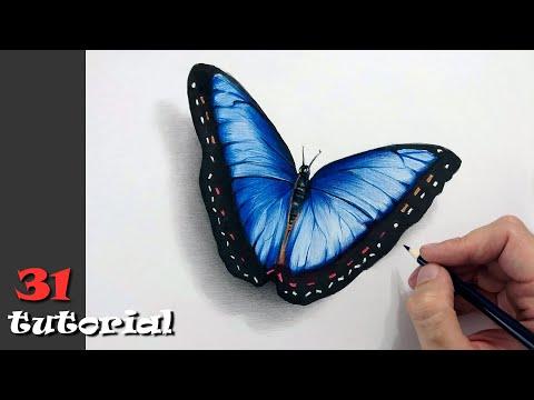 Как нарисовать бабочку цветными карандашами.  Шаг за шагом.