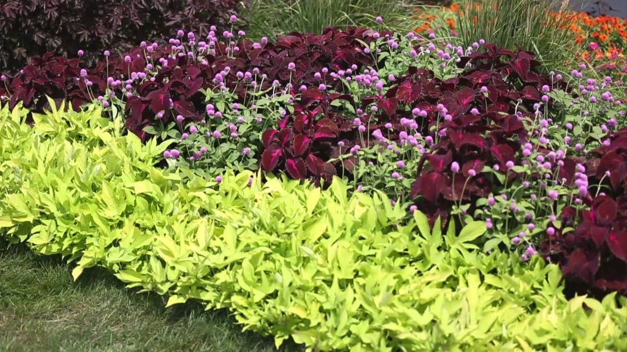 Garden landscape how to design a garden youtube Better homes and gardens flower bed designs