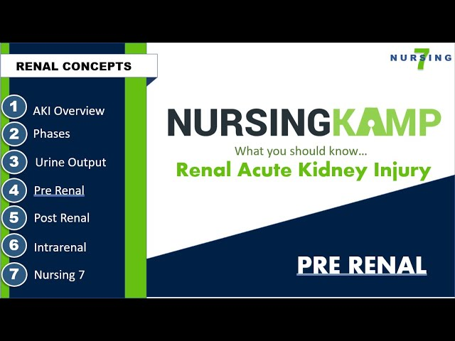 Pre Renal The Problem Be Before the Kidney!
