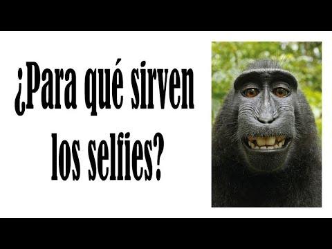¿Para qué sirven los selfies?
