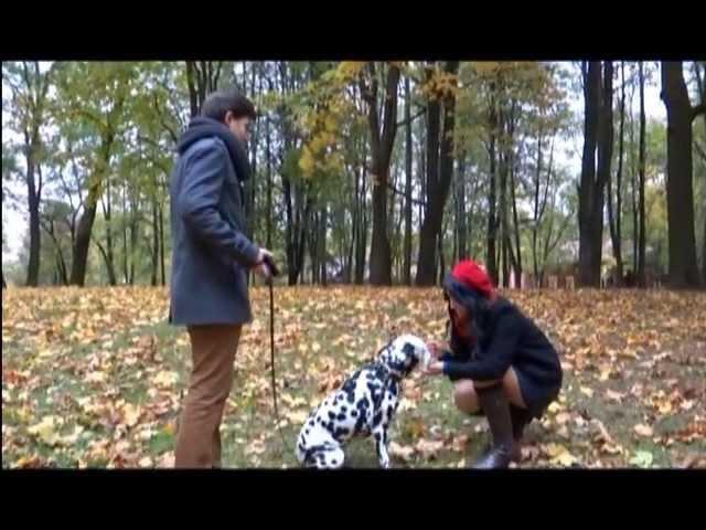 My Korean best friend - 2013 VIDEO CONTEST about Korea