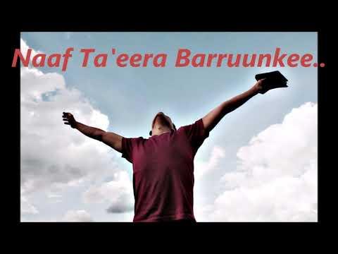 NAAF TA'EERA BARRUUNKEE: MAGARSA TADESE
