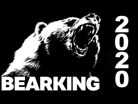 Лучшие воблеры от BearKing 2019 и 2020!