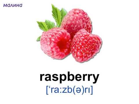 ягоды в картинках на английском винник