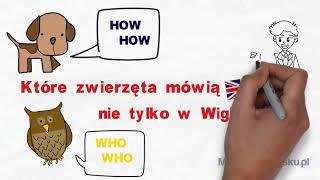 Które zwierzęta mówią po angielsku nie tylko w Wigilię? | Mów po angielsku, odc.18