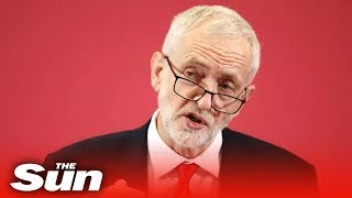 Jeremy Corbyn snubs Remainers saying Labour will respect Brexit referendum