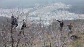 DIMPLE PANJTA LIVE AT DEHA BALSON TALKING ABOT APPLE TREE PRUNING