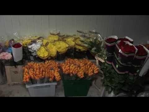 Проверка цветочных магазинов