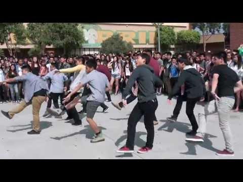 Temple City 2013 Flash Mob
