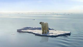 Auswirkungen des Klimawandels -Doku 2015- (Neu in HD)